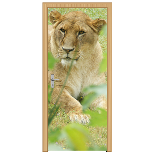 deursticker leeuw - DS1002