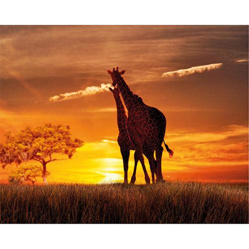 Repro Voorne - tuinposter giraf