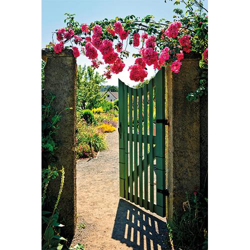 Repro Voorne tuinposter hek met rozen