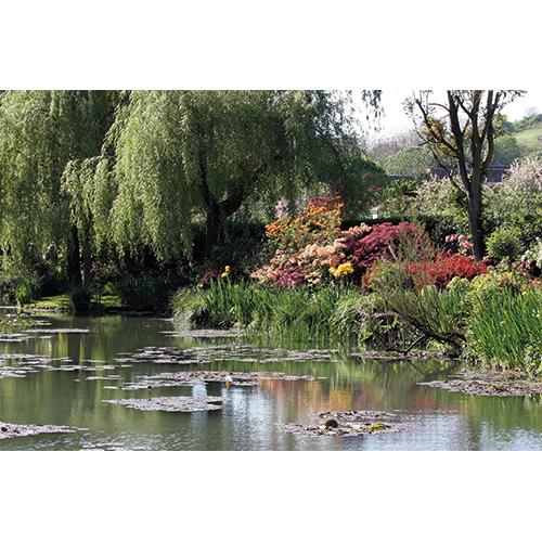 Repro Voorne tuinposter vijver