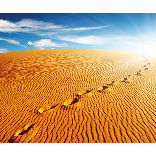 Repro Voorne voetsporen woestijn
