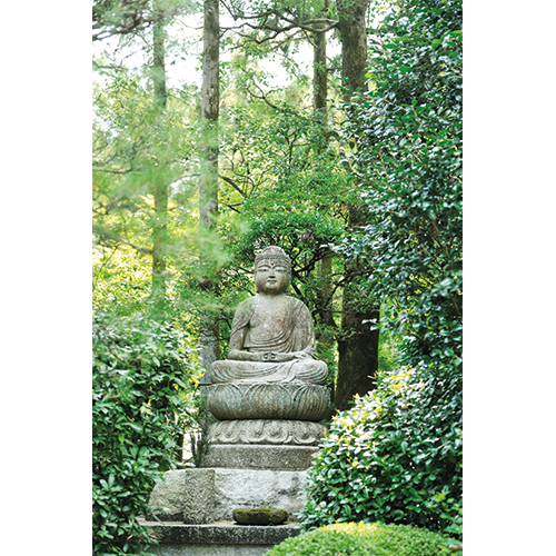 Repro Voorne tuinposter Boeddha